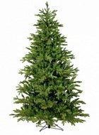 Black Box Сосна Ирландская, 260 см, зелёная