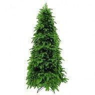 Triumph Tree Ель Нормандия стройная, 230 см, зеленая