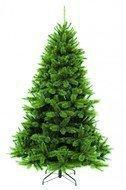 Triumph Tree Пихта Прелестная, 215 см, зеленая