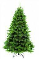 Triumph Tree Пихта Прелестная, 230 см, зеленая