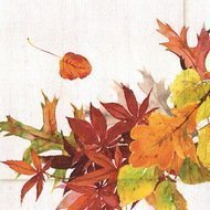 Paperproducts Design Салфетки Golden Autumn бумажные, 16.5х16.5 см, 20 шт.