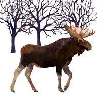 Paperproducts Design Салфетки Winter Moose бумажные, 16.5х16.5 см, 20 шт.