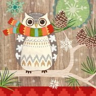 Paperproducts Design Салфетки Owl with Scarf бумажные, 16.5х16.5 см, 20 шт.