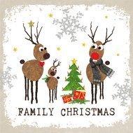 Paperproducts Design Салфетки Family Christmas бумажные, 16.5х16.5 см, 20 шт