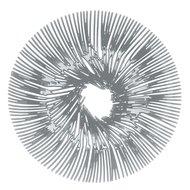 Koziol Блюдо для фруктов Anemone, 32.8 см, серое