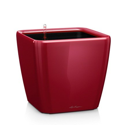 Кашпо Квадро 28 LS, красное, с системой полива и съемным горшкомКашпо<br>Кашпо размером 28х28х26 см предназначено для посадки растений с высотой побегов до 70 см. Кашпо укомплектовано съемным горшком с объемом посадочной площади – 8.5 литров. Вместимость резервуара для воды съемного лотка – около 2.5 литра. Запатентованная система автополива обеспечивает растения питательными веществами и влагой, которые необходимы для их оптимального роста в течение 12 недель. Контролировать уровень воды удобно благодаря специальному индикатору. Съемный горшок легко вынимать и заменить на месте, его удобно транспортировать и компактно хранить.<br><br>Серия: Premium Quadro LS