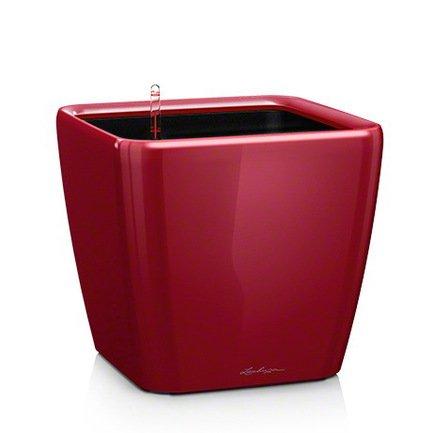 Кашпо Квадро 43 LS, красное, с системой полива и съемным горшкомКашпо<br>Кашпо размером 42х42х40 см предназначено для посадки растений с высотой побегов до 100 см. Кашпо укомплектовано съемным горшком с объемом посадочной площади – 32 литра. Вместимость резервуара для воды съемного лотка – около 10 литров. Запатентованная система автополива обеспечивает растения питательными веществами и влагой, которые необходимы для их оптимального роста в течение 12 недель. Контролировать уровень воды удобно благодаря специальному индикатору. Съемный горшок легко вынимать и заменить на месте, его удобно транспортировать и компактно хранить.<br><br>Серия: Premium Quadro LS