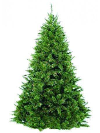 Сосна Сказочная, 155 см, светло-зеленаяИскусственные елки<br>Искусственная Сосна Сказочная действительно напоминает лесную хвойную красавицу из детских сказок. Дерево классической формы впечатляет своей роскошной кроной. Плавно изогнутые и приподнятые кверху пушистые веточки с молодыми побегами изготовлены из экологически чистых материалов и очень похожи на настоящие хвойные лапы. Для надежной установки предоставляется устойчивая металлическая подставка. Сосна Сказочная не только украсит любое помещение, но и подарит новогоднее настроение взрослым и детям.     Характеристики:   Количество веточек: 473  Нижний диаметр ели: 1.09 м  Объем: 0.07<br><br>Серия: Модерн